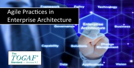 Agile Enterprise Architecture